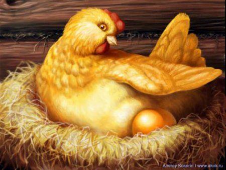 Сказка про курицу несущую золотые яйца