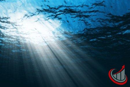 SEO-специалист должен поружаться в глубину