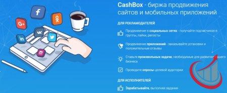 «CASHBOX» — биржа для заработка и продвижения бизнеса